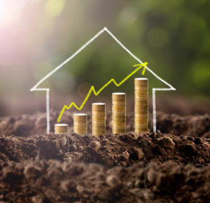 Property capital growth