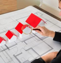 Property expert